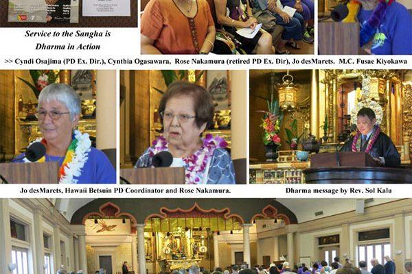 Dana Awareness Day 2017 collage 1
